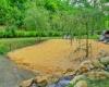 camping avec étang de peche